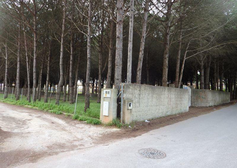 03-Parcela-Chiclana-C04264