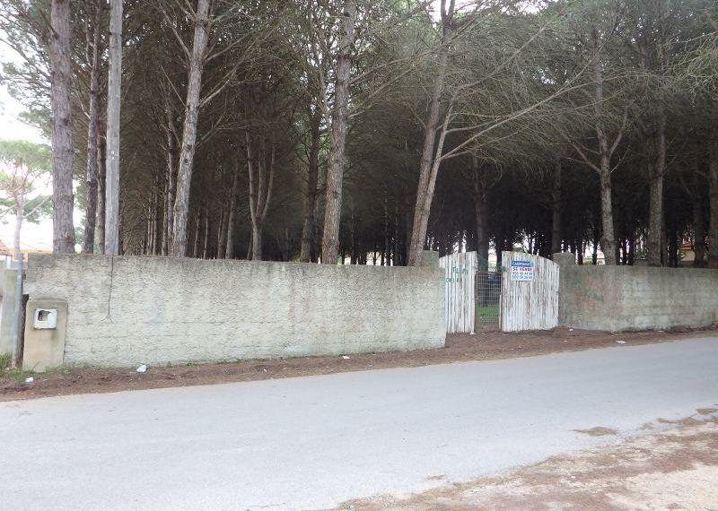 04-Parcela-Chiclana-C04264