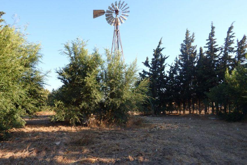 01-Parcela-Chiclana-C04358