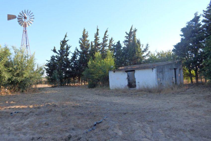 09-Parcela-Chiclana-C04358