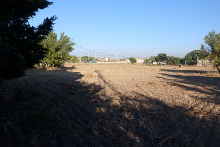 13-Parcela-Chiclana-C04358