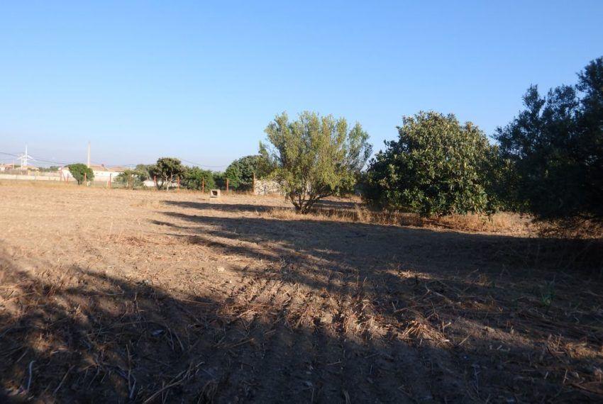 14-Parcela-Chiclana-C04358