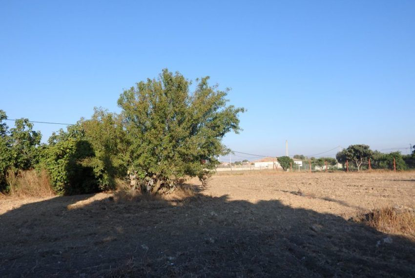 20-Parcela-Chiclana-C04358