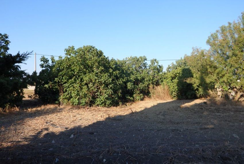 23-Parcela-Chiclana-C04358