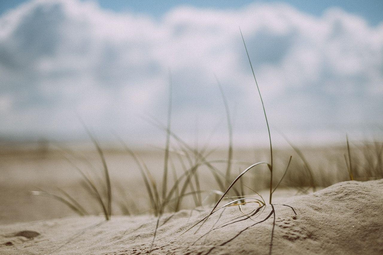 playa en septiembre chiclana