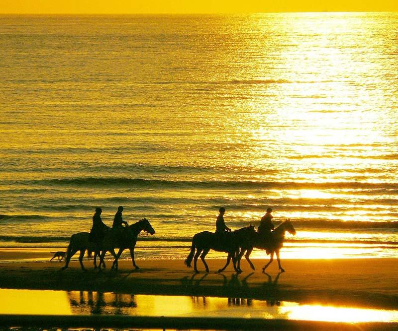 paseos a caballo en chiclana sancti petri