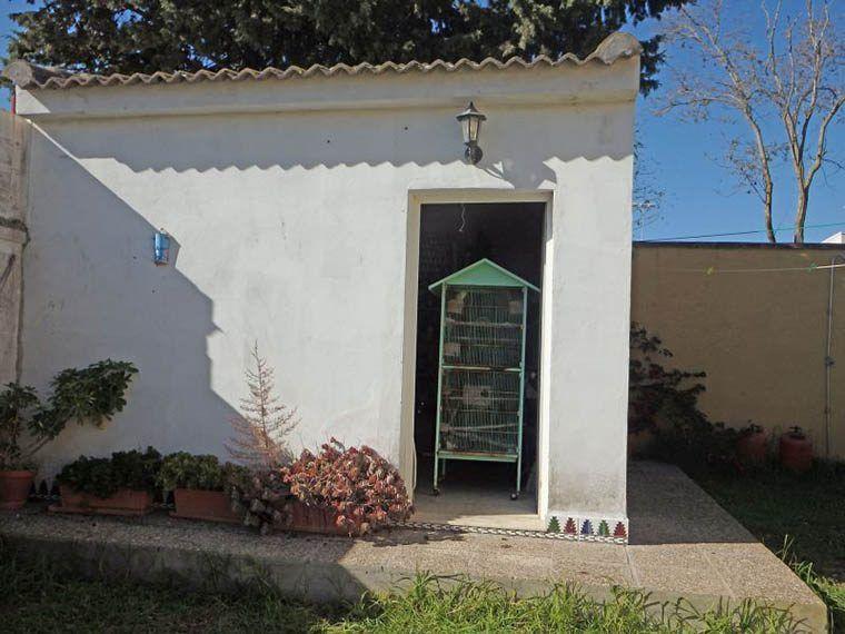 19-Chalet-La Barrosa-CAM04065-