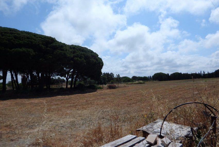 04-Parcela-Novo-Sancti-Petri-C04490
